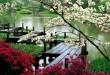 blossoms-japanese-garden